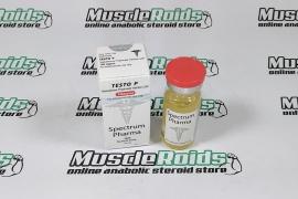 Testo P 100mg 10ml vial