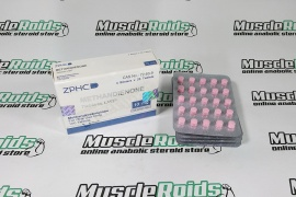 Domestic ZPHC Methandienone 10 mg 100 tabs